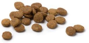 Ejemplo de comida seca en forma de croquetas (pienso)