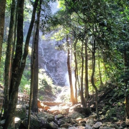 naturally langkawi waterfall and jungle