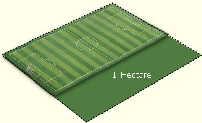 football_pitch_hectare2