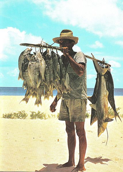 Fisherman and his catch, Seychelles. The fishes in this catch, including small sharks, were hooked on hand lines many miles off shore. Photo by Maxime Fayon (1977)