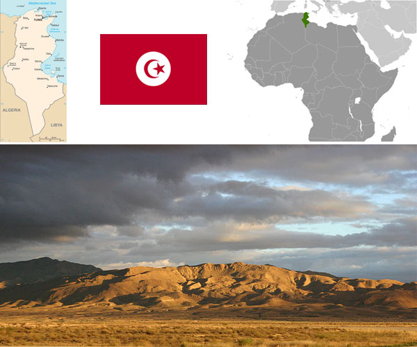 Maps and flag courtesy of CIA World Factbook. Photo of Landscape in Tozeur–Nefta International Airport (Tunisia), by Gloumouth1.