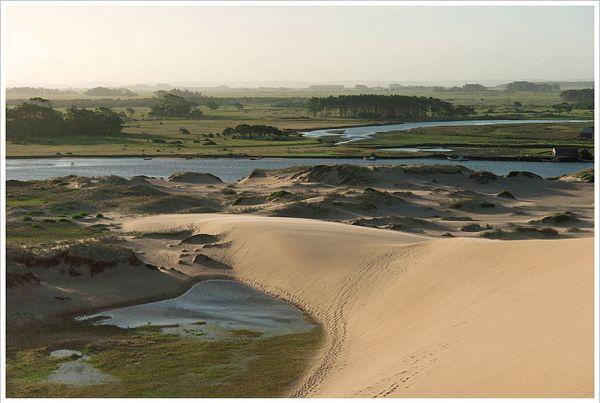 Sand dunes in Rocha, Uruguay. Photo by Montecruz Foto.