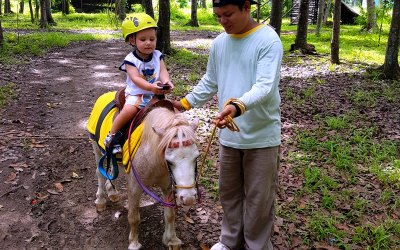 Best Day Trips from Manila: Fun Farm Sta. Elena