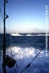 Sea fishng for Marlin