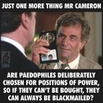 Cameron: The Pedophile Protector