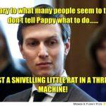 Kushner reminds me of a snivelling little rat in a threshing machine