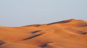 desert Morales Fallon