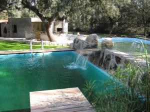 piscina1 Morales Fallon