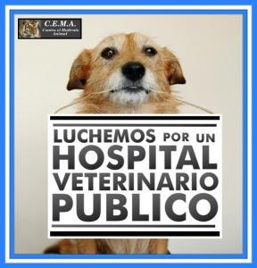 Hospital público Morales Fallon