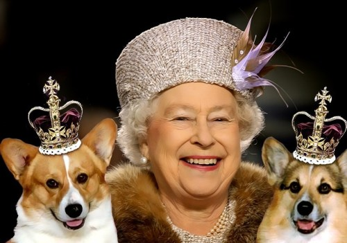 Queen Elizabeth and dogs