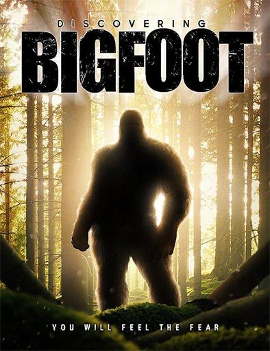 Poster de Discovering Bigfoot