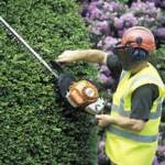 Rent hedge trimmer and other gardening tools