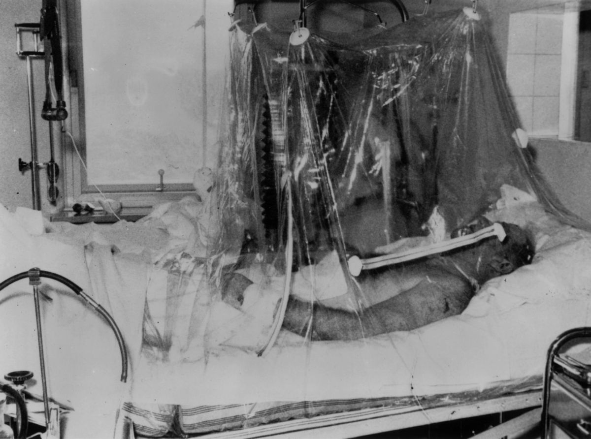 Sir Matt Busby lying in an oxygen tent in Munich Hospital (Photo: Keystone/Getty Images)