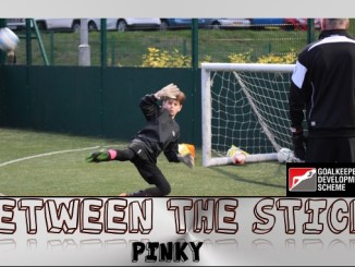 GDS Between the Sticks Pinky