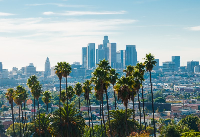Los Angeles downtown skyline, aerial / elevated view, backlit, and with a group of palm trees in the foreground.