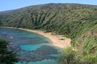 A Day at Honolulu's Hanauma Bay Nature Preserve