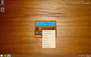 3 Practical Reasons to Use TunnelBear VPN While Traveling Overseas