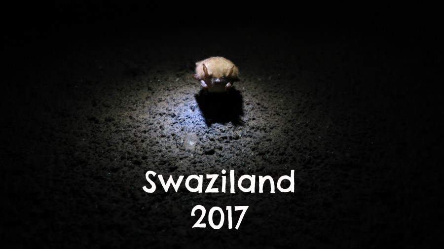 Swaziland 2017