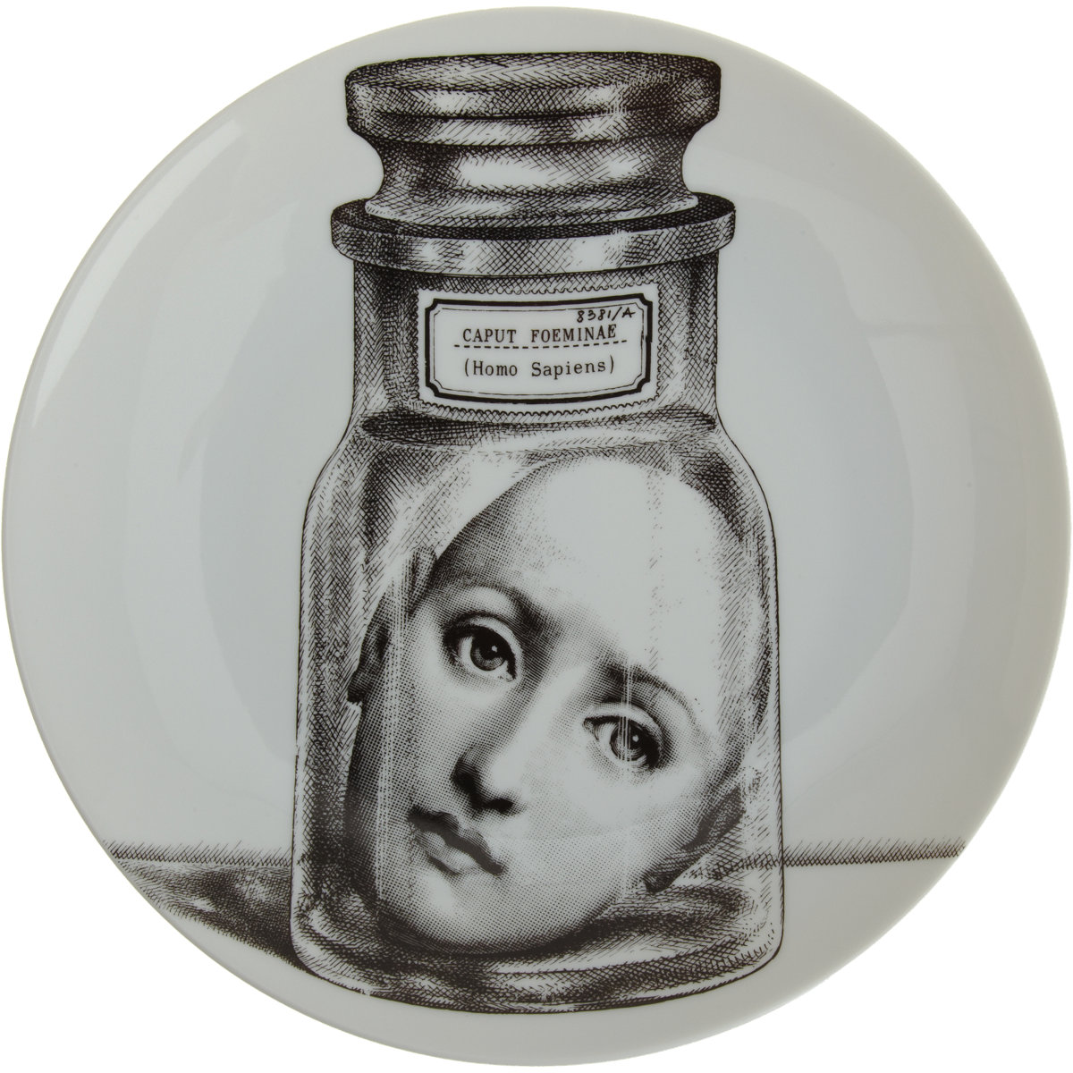 Fornasetti Piero Fornasetti Godard Girl The Taxonomies Of Design