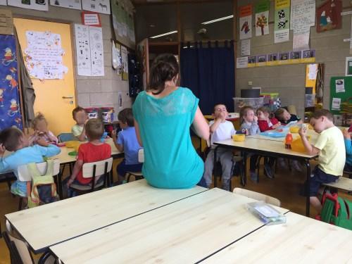 volunteer in Belgium