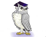 wgu online college owl mascot