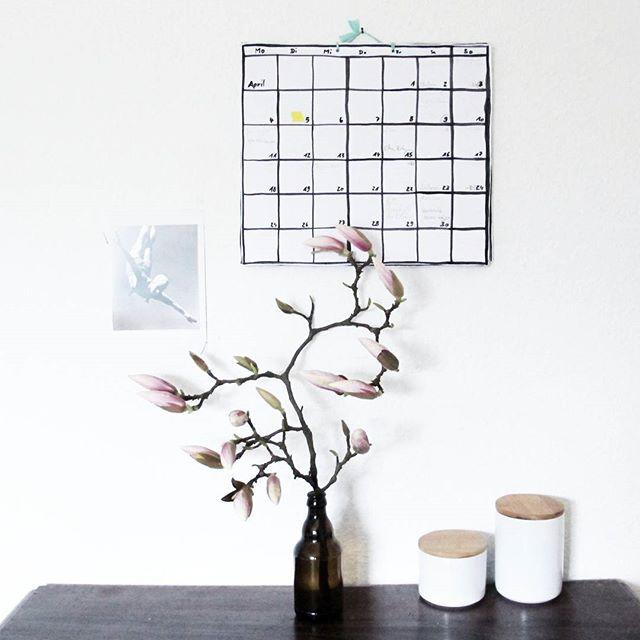Magnolie, Minimalistische Floristik, Total Aufgeräumt