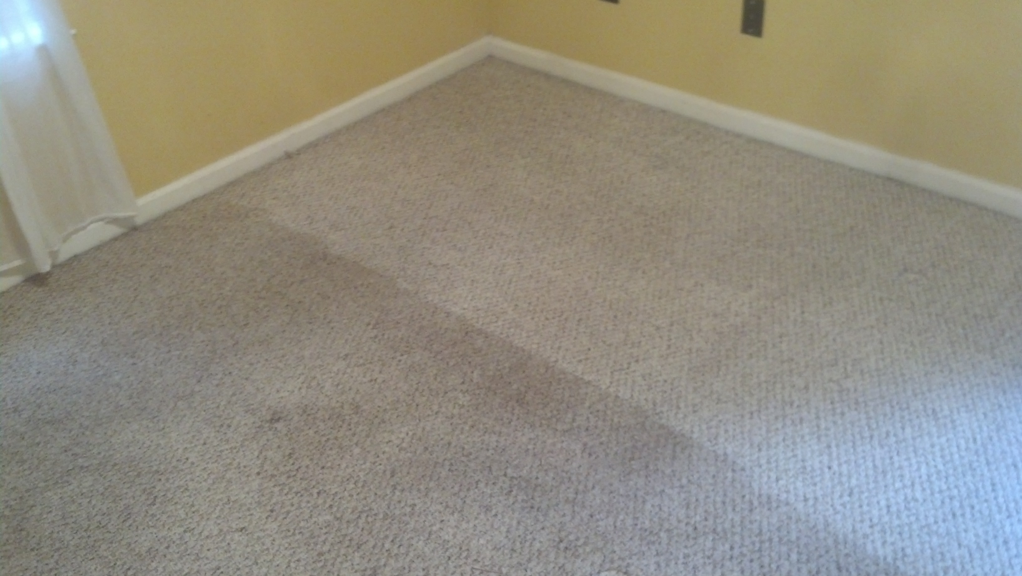 Carpet Cleaning Carpet Cleaning Company Peachtree City Fayetteville