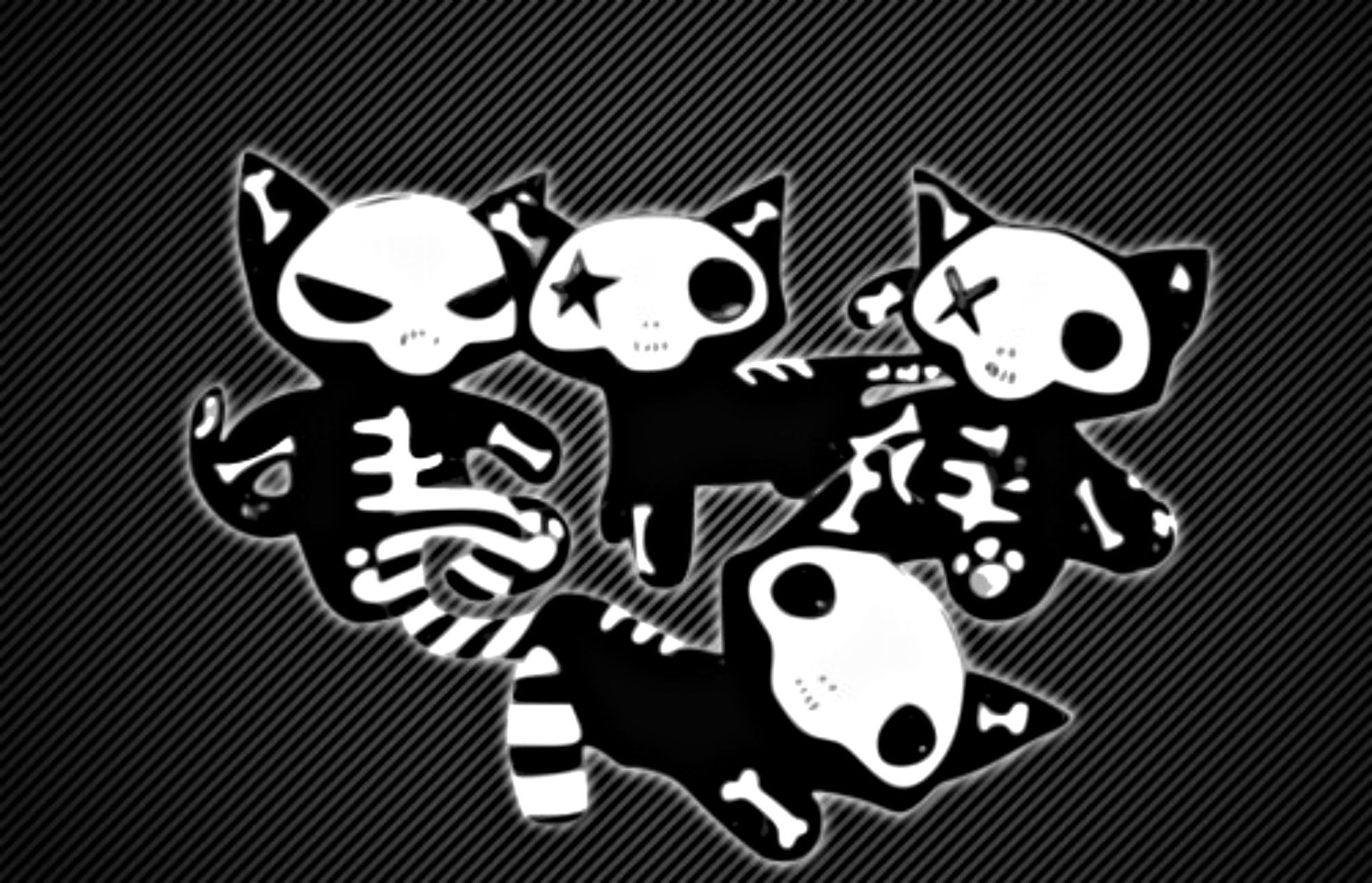 Cute Cat Wallpapers High Resolution 29 Photos Of Girly Skull In Hdq