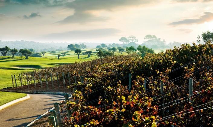 golf-son-gual-mallorca-wine-705x423