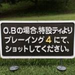 glb0000712-1.jpg