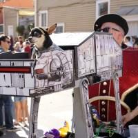Krewe of Barkus parade. (Photo: Paul Broussard)