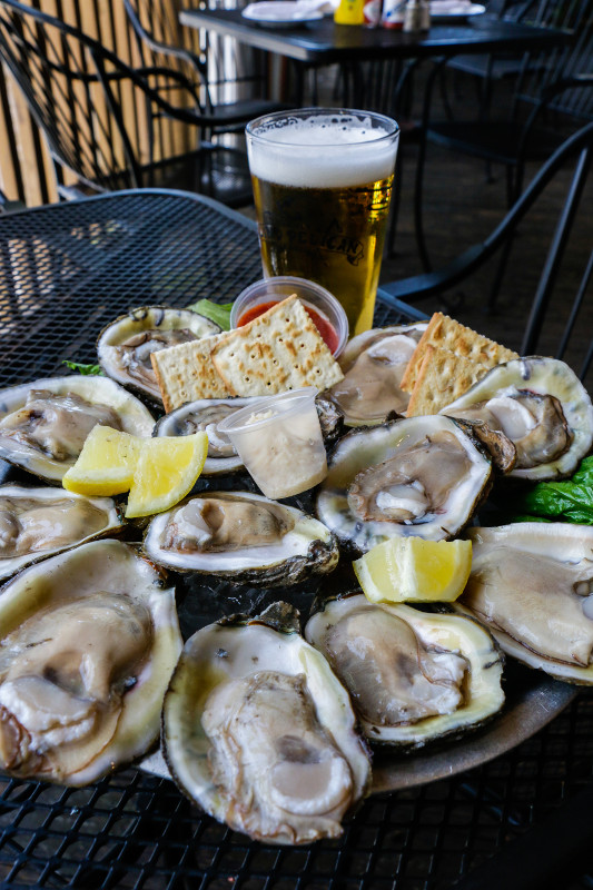 Blind-Pelican-Oysters