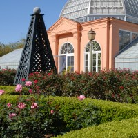 City Park Botanical Garden (photo courtesy of New Orleans City Park)