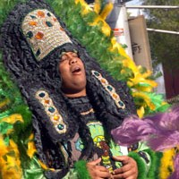 Mardi Gras Indians New Orleans