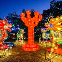 One of the first exhibits you'll see at China Lights are these Chinese Fortune Animals known as Qilin, made up of medicine bottles filled with colored liquid. This is the first of many photo op stops on the walking paths in the Botanical Garden.