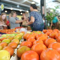 creole tomato fest