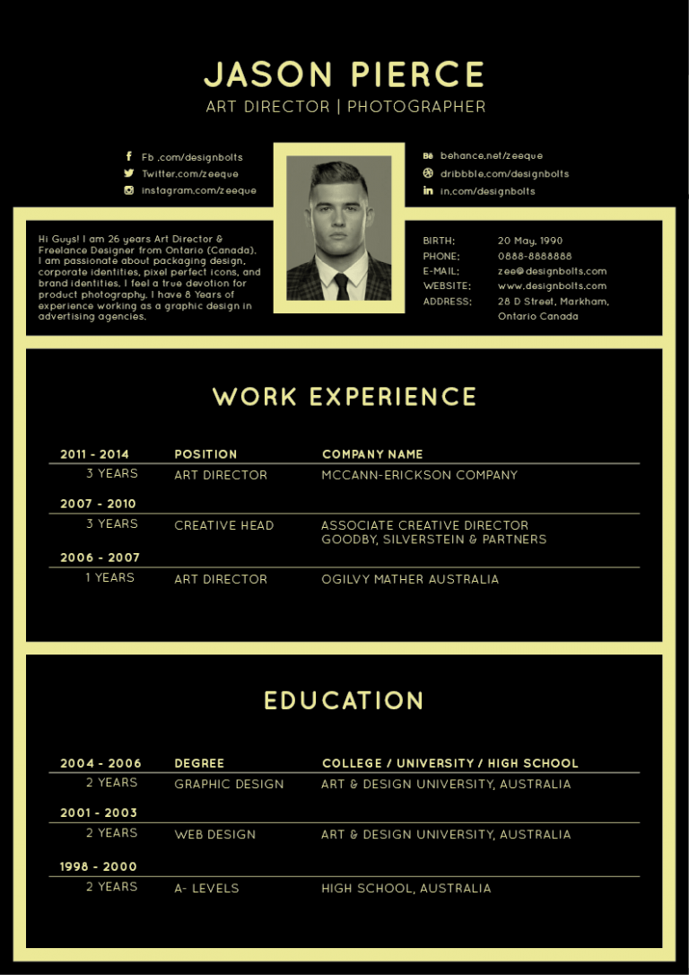 elegant cv template word