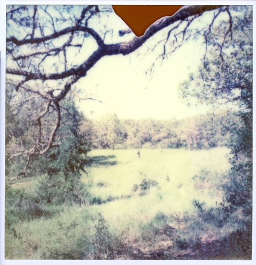 Impossible Project PX-70 Color Shade