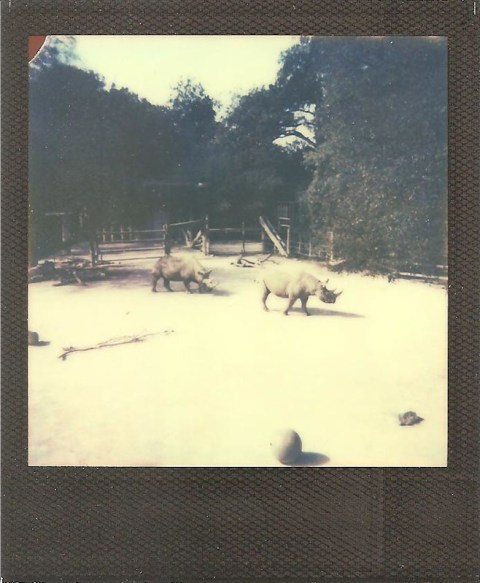 Photo: Luke Bolton - Impossible Project PX-680 Color Block - Polaroid OneStep