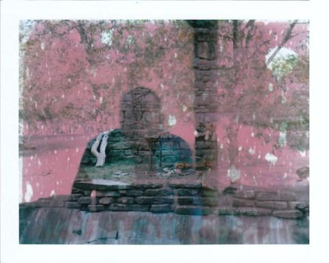 Photo: Scott Mitchell - Polaroid 180 Land Camera - Fuji FP-100C