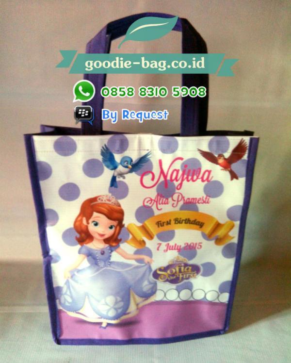 Goodie Bag Sofia / Tas Souvenir Ultah murah