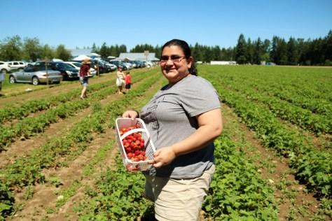 BC Strawberries