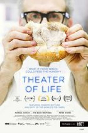 theater of life 2016 poster