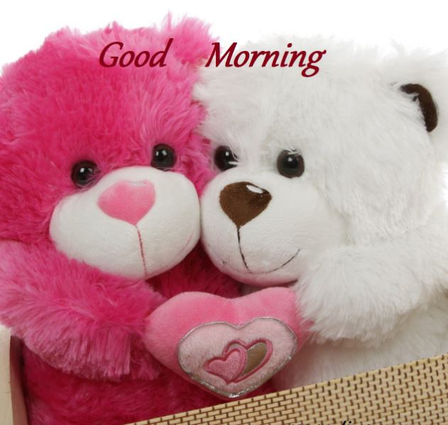 Download Cute Tweety Wallpapers Whatsapp Facebook Good Morning Images Good Morning Images