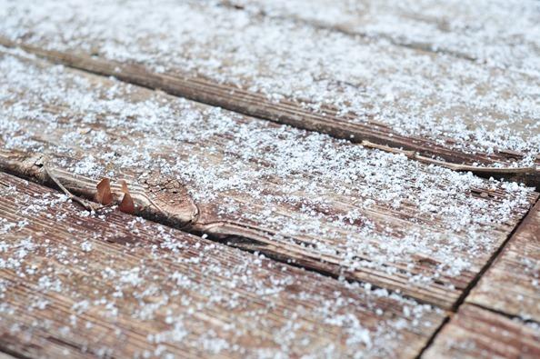 Georgia Snow (5)