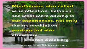 t_sharon_salzberg_inspirational_quotes_479.jpg