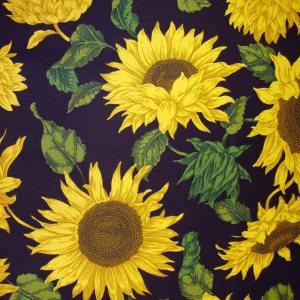 Sunburst Futon Cover