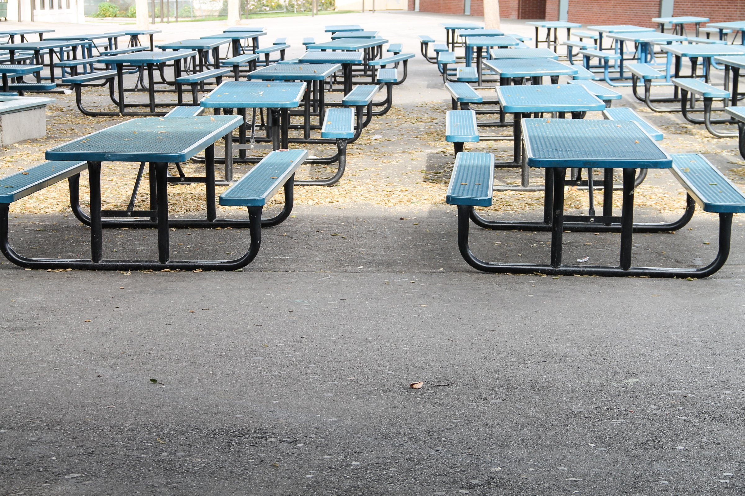 Outdoor school lunch tables