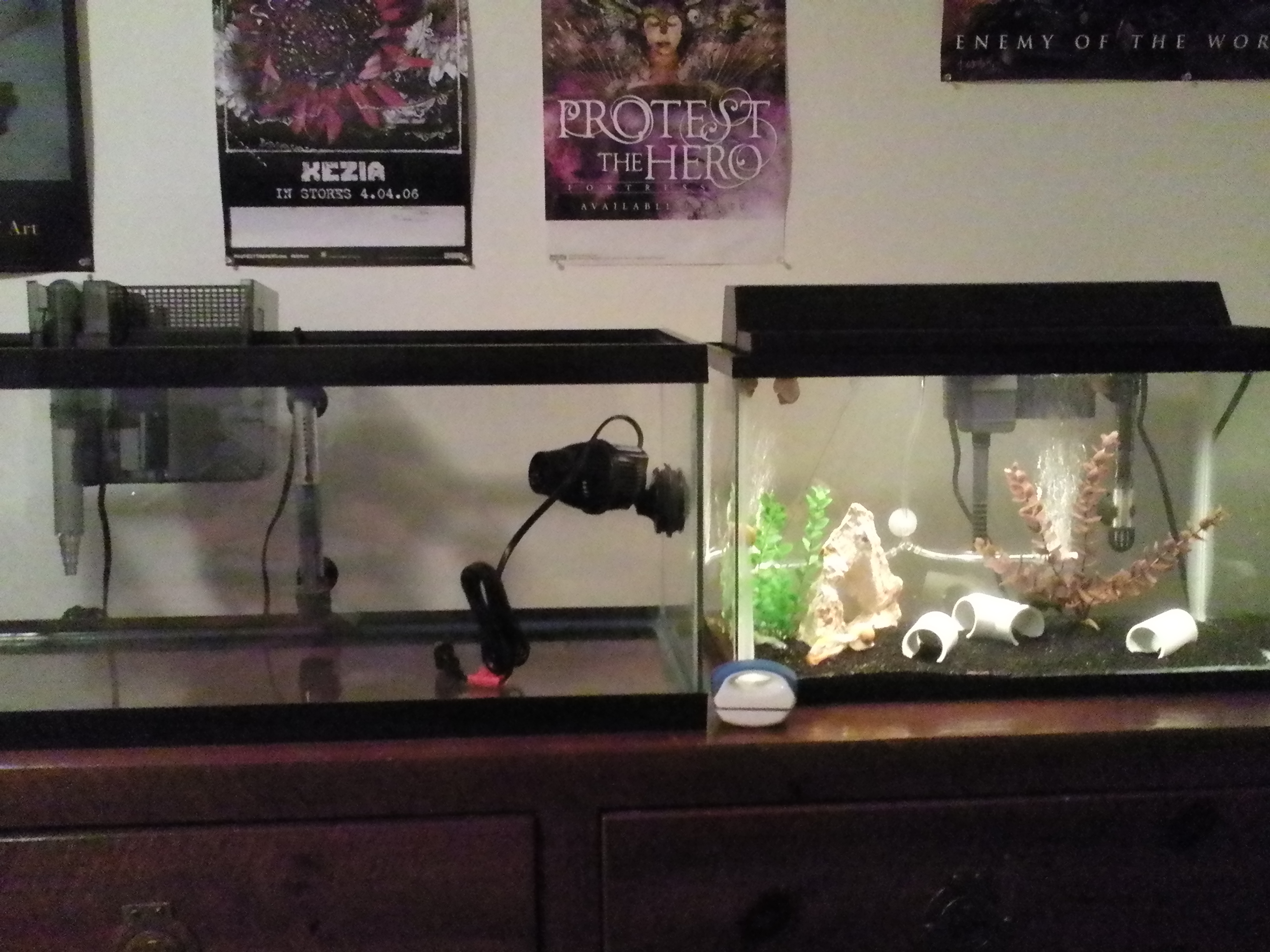 Fish tank vs aquarium - 10ft Fish Tank For Sale 3d Bowl Craft