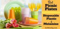 Best Picnic Plates - Disposable, Plastic and Melamine